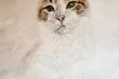misty-cat-painting