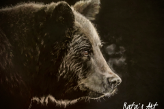 Bear-Finnish-mytology-drawing