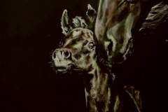 heart-chakra-horses-acrylic-painting