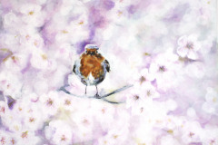 robin-with-cherry-flowers