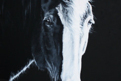 Black-and-white-horse-painting-on-canvas-