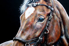 bay-red-horse-acryl-painting-on-canvas