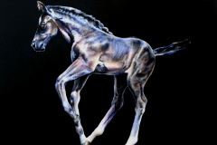 intuition-chakra-horse-series