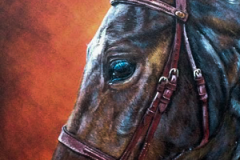 orange-backround-acryl-painting-horse-portrait