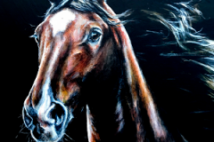 wild-horse-acryl-painting-on-canvas