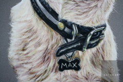 details of a collar on jack russel terrier painted with pastel pencils