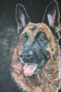 Dog art gallery