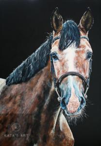 Horse art gallery