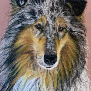 Koirat galleria