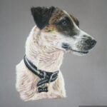 pastel drawing of a jack russel